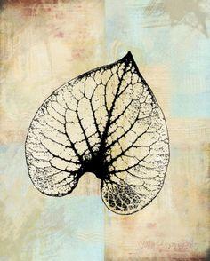 Choc Spice Skel Leaf IV Posters by Catherine Kohnke at AllPosters.com