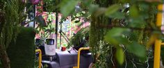 A Taipei city bus was transformed into a mobile greenhouse filled with turf and tropical plants.