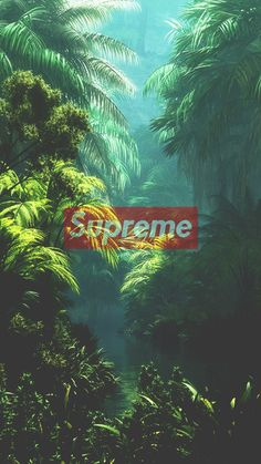 Supreme, Green Forest, Cool wallpaper - Best of Wallpapers for Andriod and ios Graffiti Wallpaper Iphone, Apple Logo Wallpaper Iphone, Hype Wallpaper, Trippy Wallpaper, Funny Iphone Wallpaper, Homescreen Wallpaper, Iphone Background Wallpaper, Black Wallpaper, Phone Backgrounds