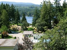 Camp Shawnigan on vancouver island easter seals camp Easter Seals, Free Summer, Vancouver Island, Camps, Lions, Wedding Venues, Photos, Pictures, Photo And Video