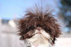 Bad hair day or awesome hair day? *** Visit our website now!