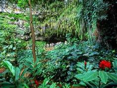 The Fern Grotto on Kauai