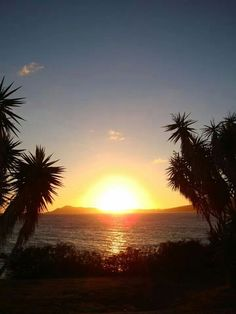 Beach, Palm Trees & Sunset - what more do you need?