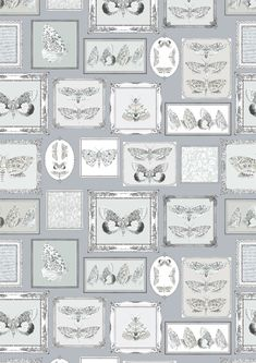 A beautiful digital wallcovering, created to resemble a wall of framed hand drawn moth illustrations. These are set on a pale charcoal grey background. Please note product is sold by the linear metre and the price is for one metre. Extra wide wallcovering at 138cm / 54 inches and pattern repeat is 117.5cm / 46 inches. This very special wallpaper is cut to order. Please request sample for true colour/texture. Please note this wallcovering requires trimming and overlap hanging – so we recommend yo Moth Drawing, Special Wallpaper, Wall Candy, Gray Background, Wall Wallpaper, Blue Backgrounds, True Colors, Favorite Color, Frost
