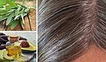 Découvrez les causes des cheveux blancs et combattez