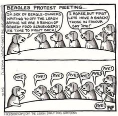 Beagle protest meeting