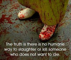 """""""Humane?"""" If you want humane, go #vegan for cruelty-free dining"""