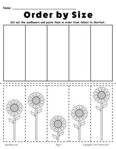 FREE Printable Sunflower Ordering Worksheets: Shortest to Tallest & Tallest to Shortest! Free Preschool, Preschool Printables, Preschool Kindergarten, Preschool Learning, Kindergarten Worksheets, Teaching, Free Worksheets, Measurement Kindergarten, Measurement Activities