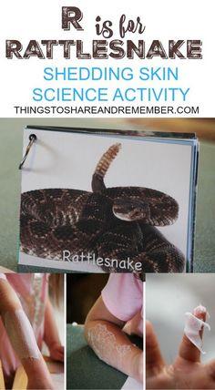 R is for Rattlesnake Shedding Skin Science Activity