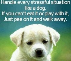 What to do when Stressed out!!