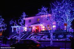 Jdombs-Travels-Brooklyn-Christmas-Lights-4.jpg (600×400)