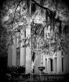 Southern Gothic. I would love a house like this.