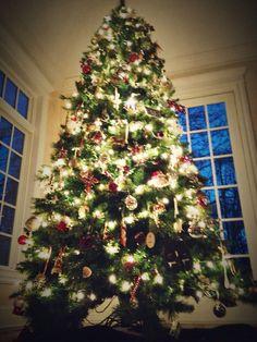 Christmas tree Christmas Love, Christmas Trees, Christmas Lights, Vintage Christmas, Christmas Crafts, Holiday Parties, Holiday Decor, Home Decor Inspiration, Winter Wonderland