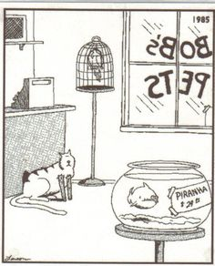 Who remembers these comics? Millions of people all over the world were fans of The Far Side! The Far Side was a single-panel comic created by Gary Larson The Far Side Gallery, Far Side Cartoons, Far Side Comics, Funny Cartoons, Funny Comics, Cat Comics, Haha Funny, Funny Cute, Funny Jokes