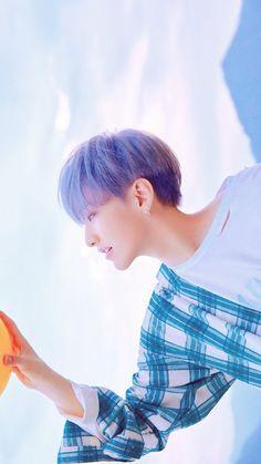 Perfección💙 Seventeen Album, Hoshi Seventeen, Kpop, Vernon Chwe, Choi Hansol, Won Woo, Babe, Seventeen Wallpapers, Asian Celebrities