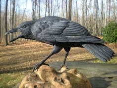 Crow Carving Bird Carvings Brad Wiley, Brad Wiley Bird Carvings Let's Carve A Crow Bird Sculpture, Animal Sculptures, Sculpture Ideas, Crow Bird, Vikings, Raven Art, Crows Ravens, Rabe, Bird Pictures
