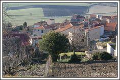 Bonjour à tous nous sommes le Mercredi 7 décembre 2016 Nous fêtons les Ambroise Le village de Pardines 63  http://jalmanach-jeannot.eklablog.fr/mercredi-7-decembre-2016-a127731426