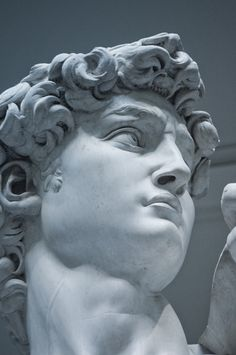 https://flic.kr/p/oQHVWc | David - Michelangelo