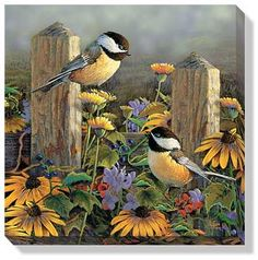 Chickadees Wrapped Canvas by Sam Timm