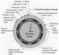Oh yeah, and if the life of earth were compressed into 24 hours, humans would appear just over a minute before midnight: | 28 Reasons Why Time Is The Most Insane Thing Ever