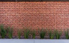 """Image 15 of 24 from gallery of """"U"""" House / Eleonora Aquilante, Ariel Busch Arquitectos. Photograph by Gonzalo Viramonte S Brick, Brick And Stone, Brick Wall, Brick Architecture, Architecture Details, Compound Wall, Building Structure, Brickwork, Home Deco"""