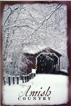 Covered Bridge in Amish country Country Barns, Amish Country, Old Barns, Country Living, Old Bridges, Winter Scenery, Over The River, Snow Scenes, Christmas Scenes