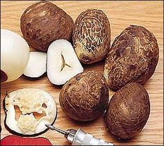 Tagua Nuts (Vegetable Ivory) - From a type of palm tree. I have a bracelet made of tagua beads. Got Wood, Arts And Crafts, Diy Crafts, Assemblage, Wire Weaving, Sculpture, Handmade Beads, Vintage Buttons, Wood Carving