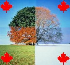 [canadian+identity+poem+picture.jpg]