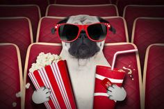 Christmas movies are like a pile of presents under the tree: there's hopefully something for everyone. This season is no exception, with an eclectic array of films for seemingly every taste, and ...