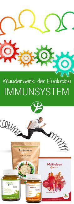 Das Immunsystem –  Wunderwerk der Evolution und Wächter der Gesundheit Das Immunsystem ist ein umfangreiches System, bei dem ein Rad ins andere greift und entsprechend feingliedrig konzipiert ist.