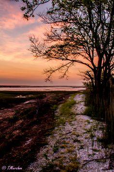 Sunrise in Oyster, VA on the Eastern Shore.