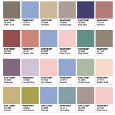 In case you're wondering what colors to use with the New 2016 Pantone's Colors of the Year - Serenity and Rose Quartz, here are just a few accent colors you might want to try.