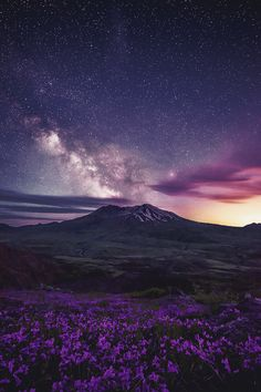 mstrkrftz: Limitless by Scott Smorra