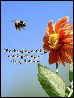 """By changing nothing, nothing changes."" -Tony Robbins"