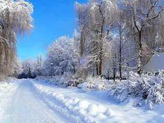 Winter scene in Bryansk, Russia (via Amazing Photos) Winter Szenen, Start Of Winter, I Love Winter, Winter White, Winter Road, Winter Ideas, Winter Season, Beautiful Landscape Photography, Beautiful Landscapes