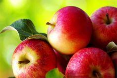 XX Festa da Mazá en Redondela