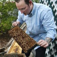 Boston Area Beekeepers Association :: Local Honey and Bee Product Sources
