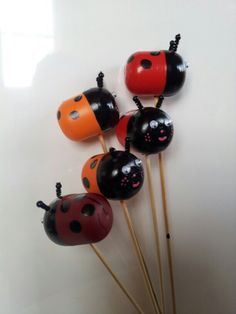 Coccinelles kinder surprise