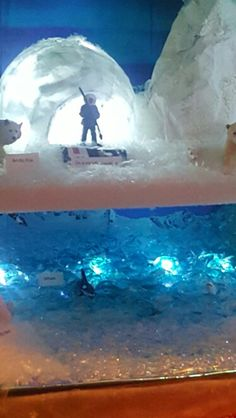 Arctic Tundra Diorama Ecosystems Projects, Science Projects, School Projects, Winter Activities For Kids, Science For Kids, Hunter School, Arctic Habitat, Operation Arctic, Diorama Kids