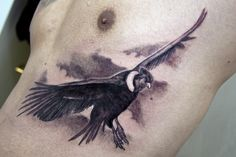 Condor by Nis-Staack on DeviantArt Body Art Tattoos, Small Tattoos, Sleeve Tattoos, Tatoos, Andean Condor, Vulture, Watercolor Tattoo, Tattoo Designs, Deviantart