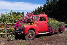 Truck made into a flower box