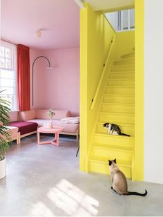 The bright yellow painted staircase and the contrasting pink living room create a striking style statement. Sophie Robinson selects this scheme as part of her colour crush feature on yellow & pink renovation Staircase Room Color Schemes, Room Colors, House Colors, Wall Colours, Painted Staircases, Colourful Living Room, Pink Room, Yellow Walls, Yellow Painting