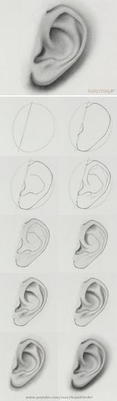 the step-by-step video tutorial here: /… How to draw an ear from the side view Watch the step-by-step video tutorial here: /… How to draw an ear from the side view Cool Art Drawings, Pencil Art Drawings, Art Drawings Sketches, Realistic Drawings, Easy Drawings, How To Shade Drawings, Pencil Sketching, Drawing Techniques, Drawing Tips