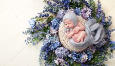 Lindsay Walden Photography, dfw newborn photography, baby girl in wreath