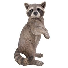 Realistic Looking Raccoon Standing On Hind Legs Statue Detailed Sculpture Amazing Likeness Life Size Scale Resin Sculpture Hand Painted Statue Indoor Outdoor Decor Mini Schnauzer Puppies, English Bulldog Puppies, Online Gift Shop, Online Gifts, Garden Animal Statues, Grey Tabby Cats, Wildlife Decor, Resin Sculpture, Best Pet Insurance