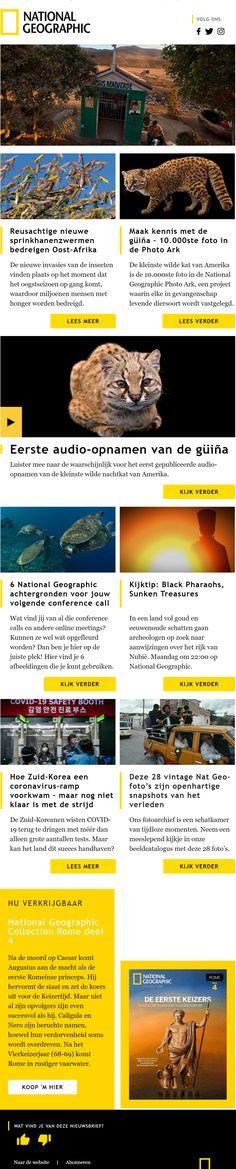 De nieuwsbrief van National Geographic bestaat uit een mooie combinatie van bijpassende koppen, afbeeldingen en kleuren. National Geographic, Software, Marketing