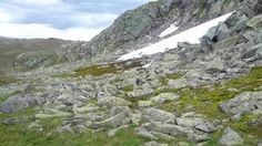 fjellrype - Google-søk Mount Everest, Mountains, Google, Nature, Travel, Naturaleza, Viajes, Destinations, Traveling
