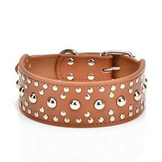 Pet Kingdom 1824 Leather Studded Large Dog Collar 4 Colors 3 Size Pet Collar Brown Medium *** Click on the image for additional details.Note:It is affiliate link to Amazon.