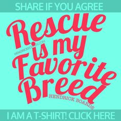 We have created the RESCUE BREED shirt, tanks and totes to support the over 370 animal saving nonprofits who benefit from these products. Every item triggers a $10.00 donation to support your most local animal nonprofit! Click the link to get your RESCUE is my favorite BREED tee and save animals!