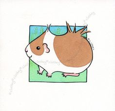 Guinea pig watercolor illustration